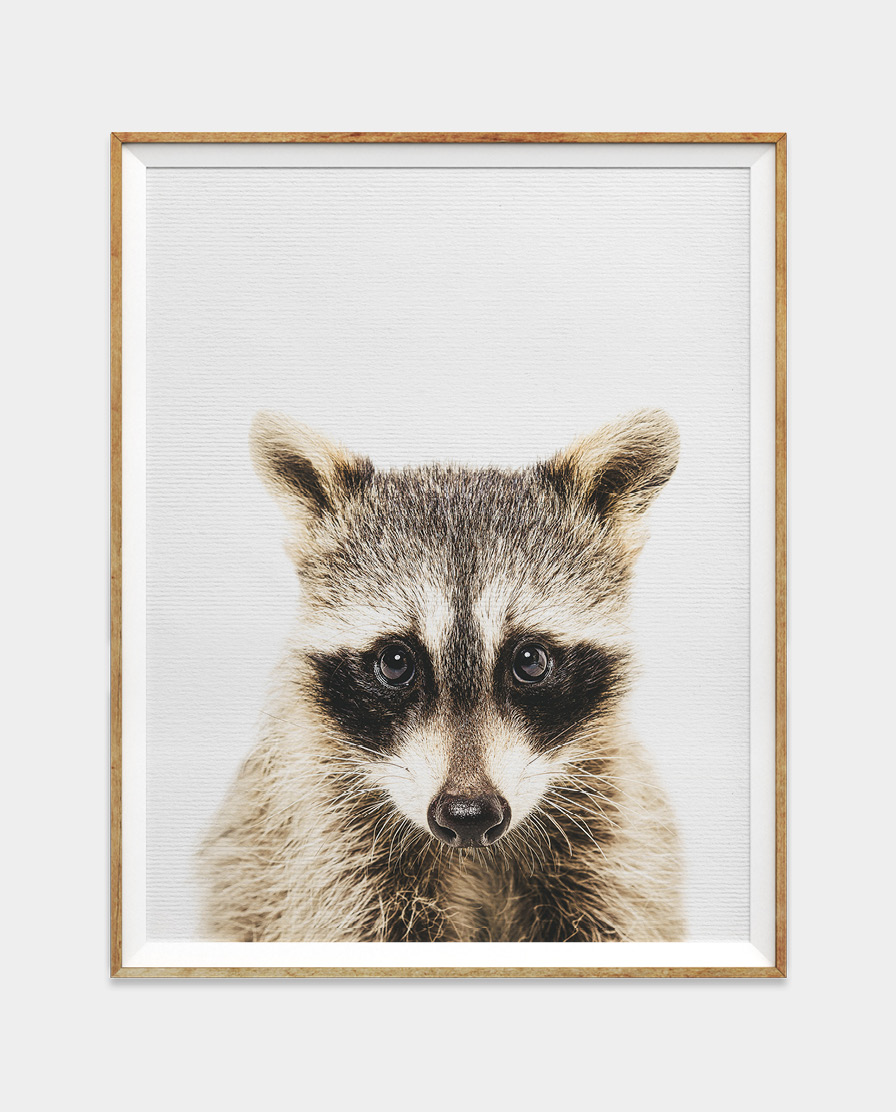Raccoon Digital Download Wall Art for Home and Nursery by The Ark