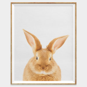 Bunny Rabbit Digital Download Wall Art for Home and Nursery by The Ark